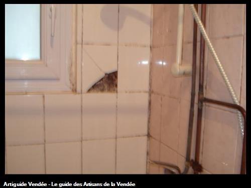 salle d'eau avant rénovation