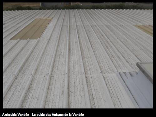 Toiture et tôles translucides, avant nettoyage, Entreprise LIPPI, à Luçon.