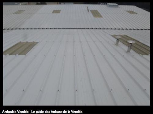 Nettoyage toiture et translucides, pendant la prestation, Entreprise LIPPI, à Luçon.